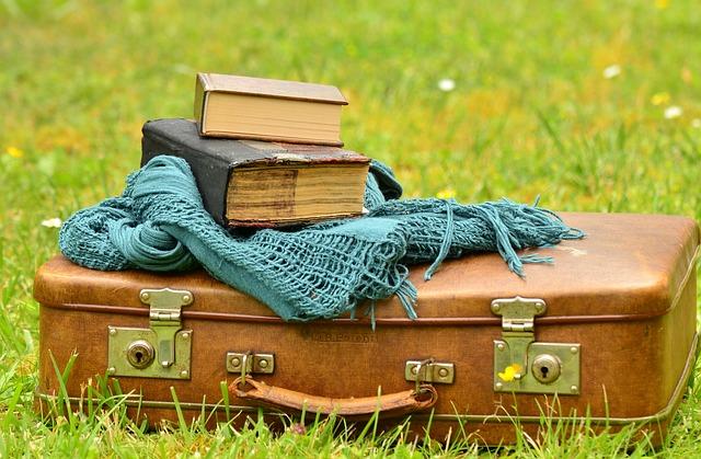 Стопки книг и чемоданы дорожные сумки трансформер