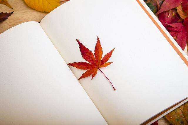 Кленовый лист на ежедневнике